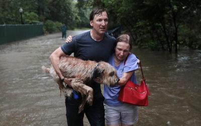 The Trauma Named Hurricane Harvey